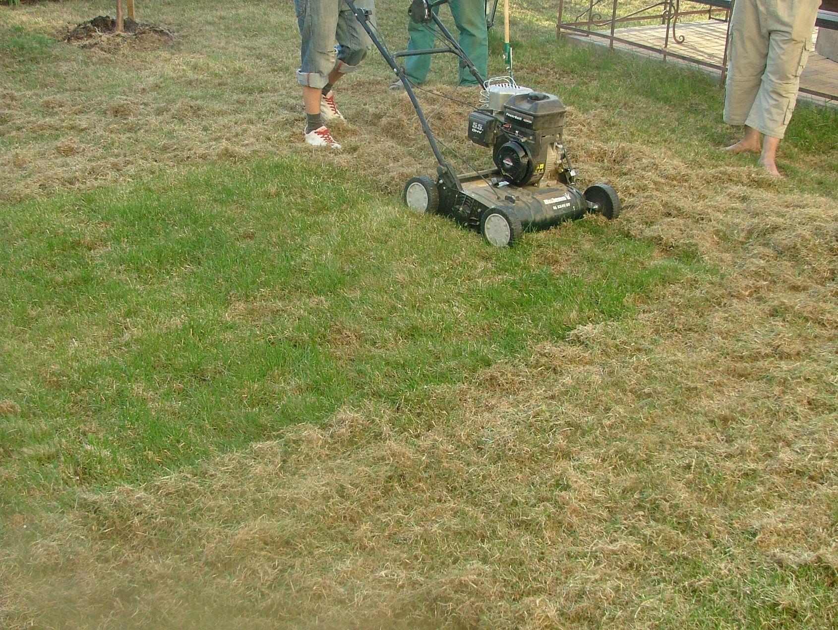 Готовим газон к весне. Вертикуляция.